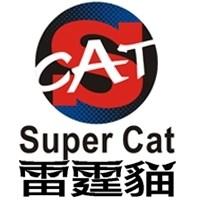 东莞市雷霆猫(台湾)汽车电子直营店